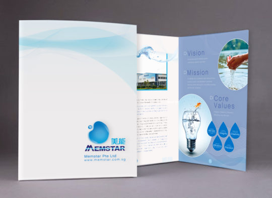 Brochure Design | Memstar